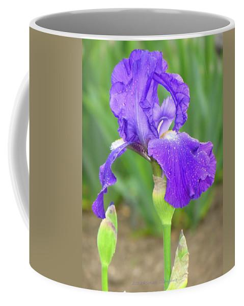 Sun Purple Coffee Mug featuring the photograph Iridescent Flower by Sonali Gangane