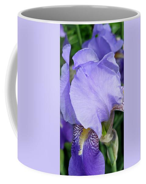 Iris Coffee Mug featuring the photograph Iris Close Up 2 by Anita Burgermeister