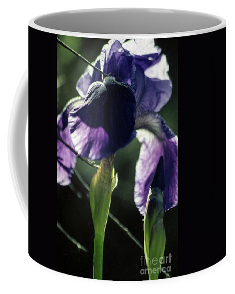 Flowers Coffee Mug featuring the photograph Spring's Gift by Kathy McClure