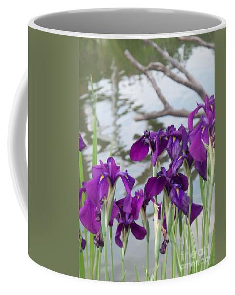 Iris Coffee Mug featuring the photograph Iris Purple Lavender by Eric Schiabor