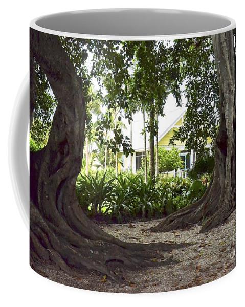 House Coffee Mug featuring the photograph Island Style Living by Carol Bradley
