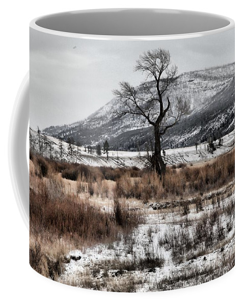 Lamar Valley Coffee Mug featuring the photograph Isolation In Yellowstone by Adam Jewell