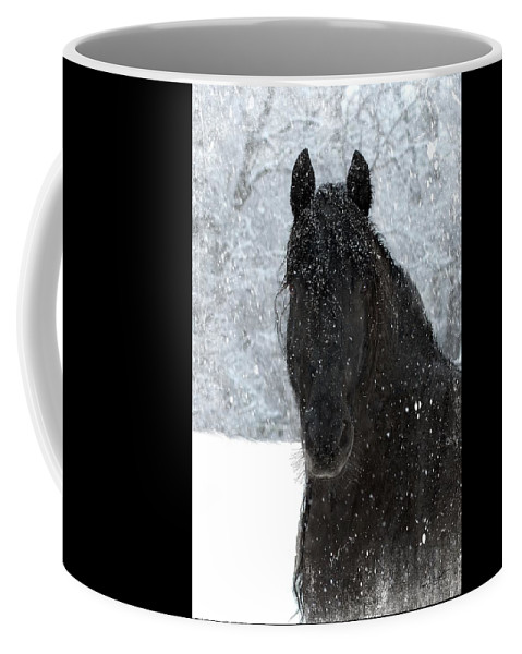 Friesian Horses Coffee Mug featuring the photograph It's Friesian out here by Fran J Scott