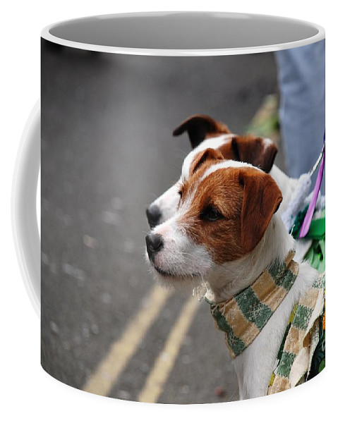 Jack Coffee Mug featuring the photograph Jack Russell Terriers by David Fowler