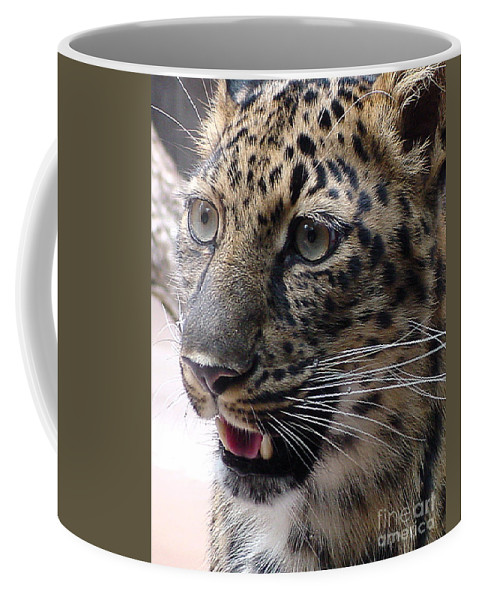 Jaguar Coffee Mug featuring the photograph Jaguar-09499 by Gary Gingrich Galleries