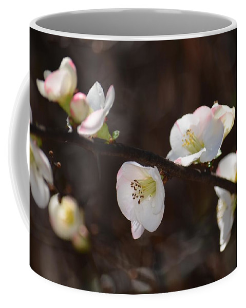 Japanese Quince 2 Coffee Mug featuring the photograph Japanese Quince 2 by Maria Urso