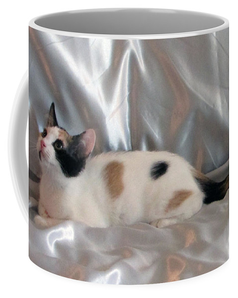 Calico Coffee Mug featuring the photograph Jazmine by Debi Singer