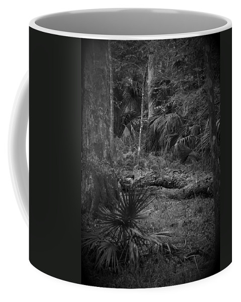 Black Coffee Mug featuring the photograph Jb Starkey Number 2 by Phil Penne