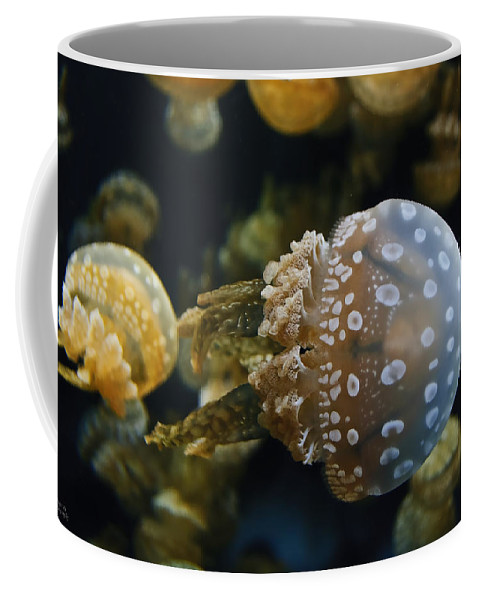 Jellyfish Coffee Mug featuring the photograph Jellyfish Swimming Right by Diego Re