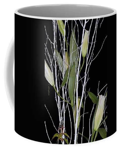 African Bulb Coffee Mug featuring the photograph Jersey Lilies by Sonali Gangane