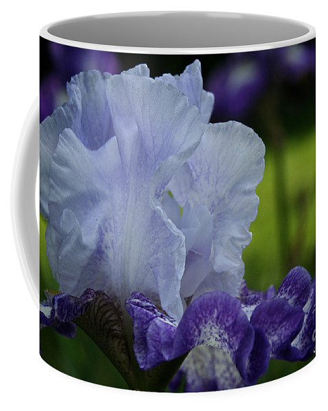 Flower Coffee Mug featuring the photograph Jimmy's Smile by Susan Herber