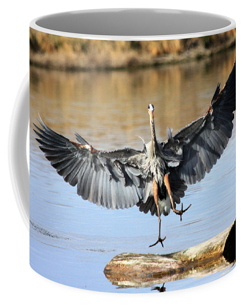 Great Blue Heron Coffee Mug featuring the photograph Jumping For Joy by Shane Bechler