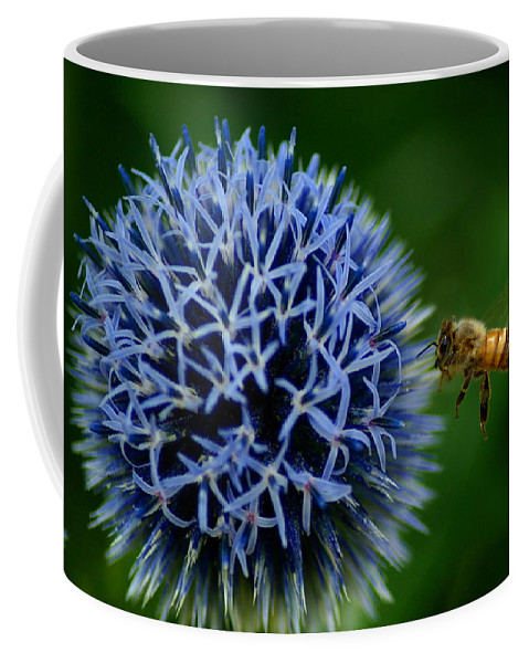 Bee Coffee Mug featuring the photograph Just Beeing There by Ben Upham III