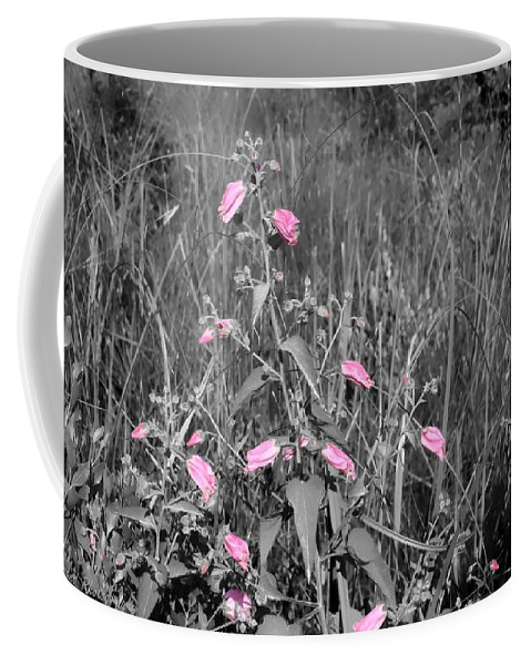 Wildflowers Coffee Mug featuring the photograph Just Pink by Debra Forand