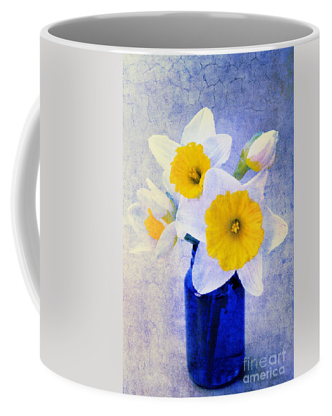 Daffodil Coffee Mug featuring the photograph Just Plain Daffy 2 In Blue - Flora - Spring - Daffodil - Narcissus - Jonquil by Andee Design