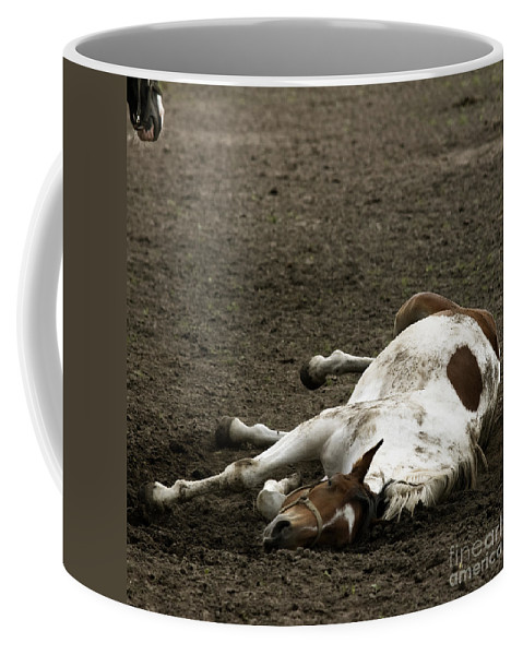 Relax Coffee Mug featuring the photograph Just Relax by Angel Ciesniarska