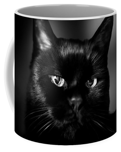 Cat Coffee Mug featuring the photograph Just Thinking by Bob Orsillo