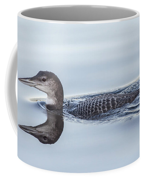 Loon Coffee Mug featuring the photograph Juvenile Loon Reflection by Richard Kitchen