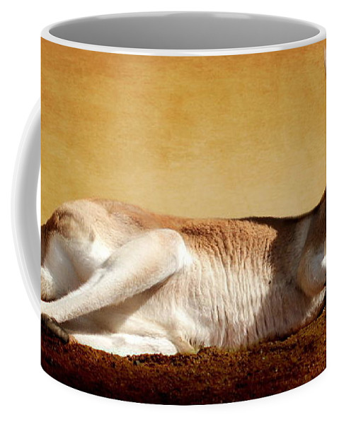 Kangaroo Coffee Mug featuring the photograph Kangaroo by Heike Hultsch