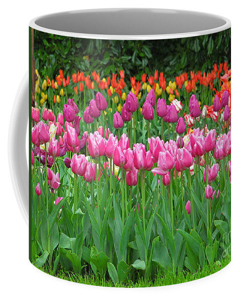 Keukenhof Gardens Coffee Mug featuring the photograph Keukenhof Gardens 14 by Mike Nellums