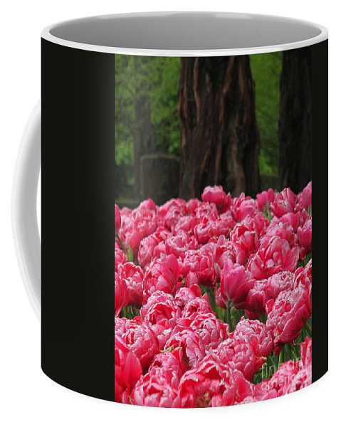 Keukenhof Gardens Coffee Mug featuring the photograph Keukenhof Gardens 16 by Mike Nellums