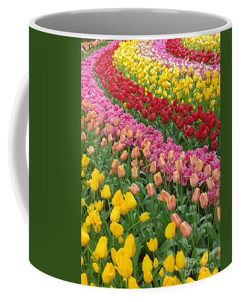 Keukenhof Gardens Coffee Mug featuring the photograph Keukenhof Gardens 74 by Mike Nellums