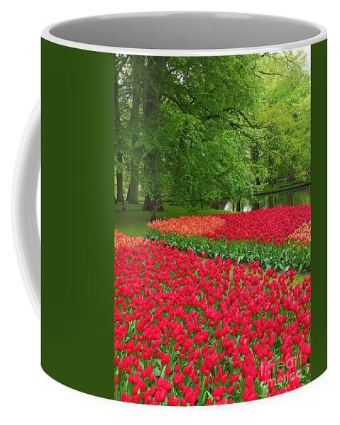 Keukenhof Gardens Coffee Mug featuring the photograph Keukenhof Gardens 88 by Mike Nellums