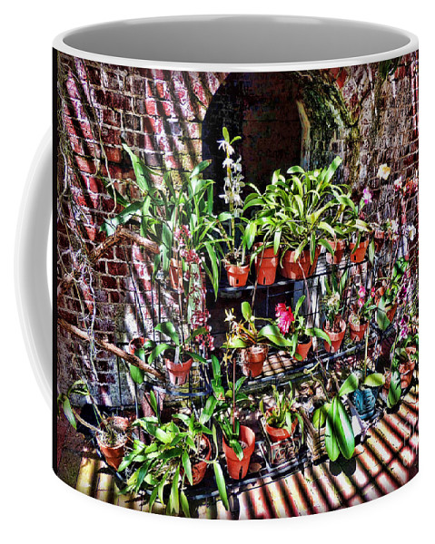 Key West Garden Club Coffee Mug featuring the photograph Key West Garden Club Pots by Joan Minchak