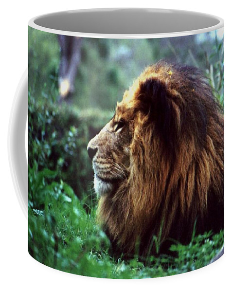 Animal Coffee Mug featuring the photograph King Of Beasts by Glenn Aker