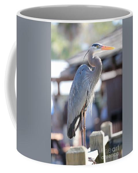 Heron Coffee Mug featuring the photograph King Of The Boardwalk by Carol Groenen