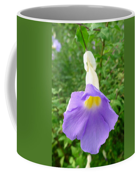 King's Mantle Flower Coffee Mug featuring the painting King's Mantle Flower 6 by Jeelan Clark