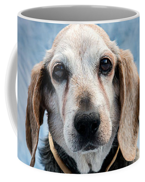 Beagel Coffee Mug featuring the photograph Kippy Beagle Senior And Best Dog Ever by Iris Richardson