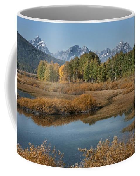 Grand Teton Coffee Mug featuring the photograph Kiss Of Fall In The Grand Tetons by Sandra Bronstein