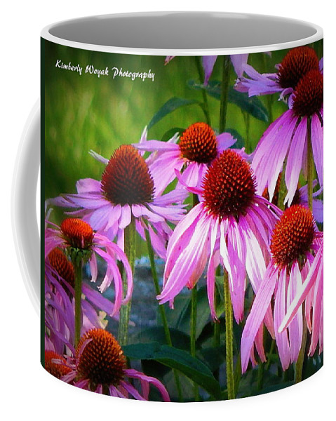Quintessential Prairie Plants Coffee Mug featuring the photograph Kissed By Sunlight by Kimberly Woyak