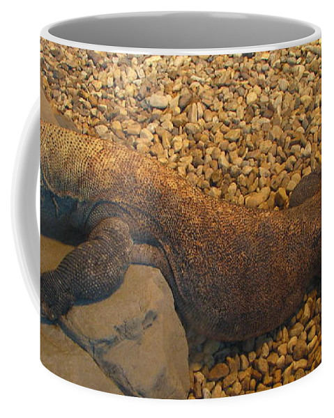 Art For The Wall...patzer Photography Coffee Mug featuring the photograph Komodo by Greg Patzer