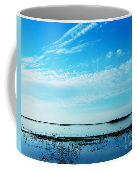 Wildlife Refuge Coffee Mug featuring the photograph Lacassine Pool Louisiana Afternoon by Lizi Beard-Ward