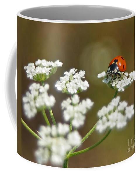 Ladybug Coffee Mug featuring the photograph Ladybug In White by David Cutts