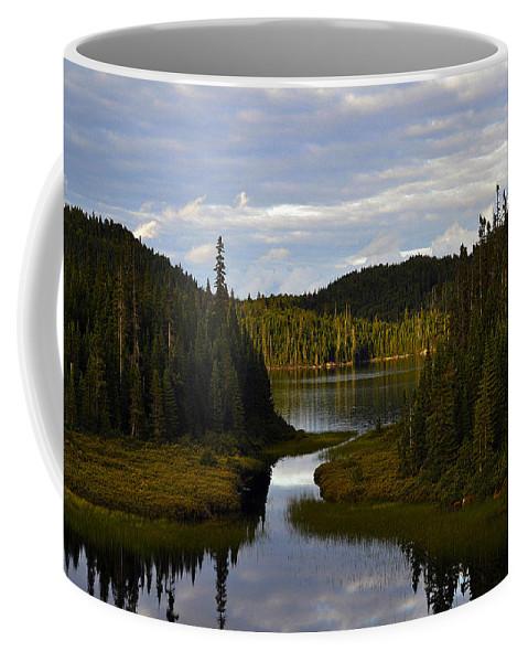 Lake Coffee Mug featuring the photograph Lake 2 by Ingrid Smith-Johnsen