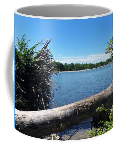Sheldon Marsh Coffee Mug featuring the photograph Lake Erie At Sheldon Marsh by Shawna Rowe