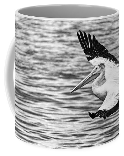 White Pelican Coffee Mug featuring the photograph Landing Pelican In Black And White by Thomas Young