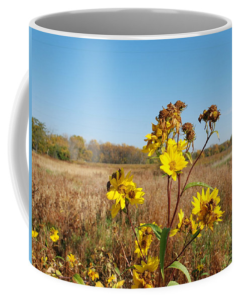 Flower Coffee Mug featuring the photograph Last Blooms Before Fall by Larry Ward