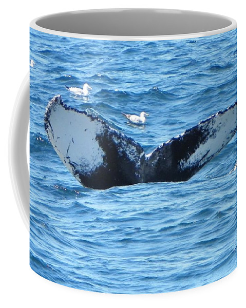 Nature Coffee Mug featuring the photograph Last Looks by Paul Smith