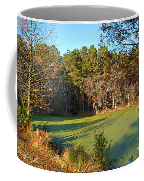Popular Coffee Mug featuring the photograph Late Afternoon Long Shadows by Paulette B Wright