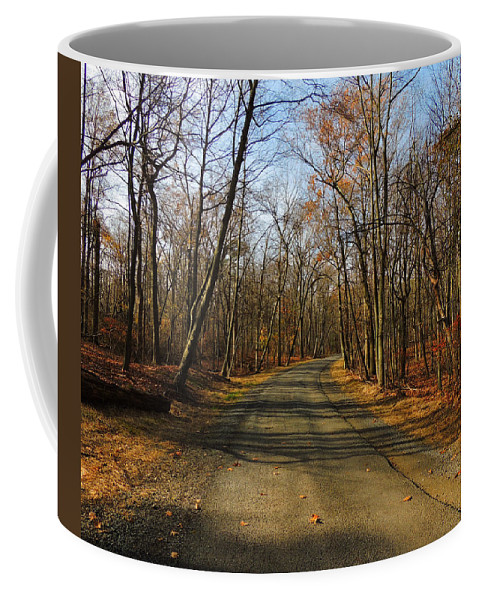 Late Fall At Cheesequake State Park Salani Coffee Mug featuring the photograph Late Fall At Cheesequake State Park by Raymond Salani III
