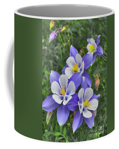 Lavender And White Columbine Flowers Coffee Mug featuring the digital art Lavender And White Star Flowers by Mae Wertz