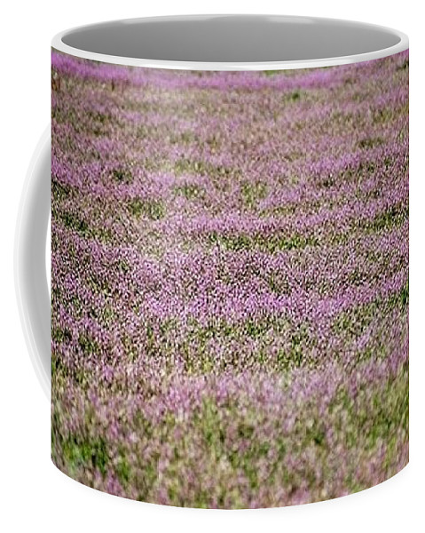 Lavender Coffee Mug featuring the photograph Lavender Fields by James Michael Olson