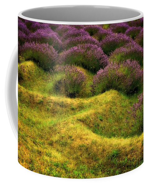 Lavender Coffee Mug featuring the photograph Lavender Fields by Michelle Calkins