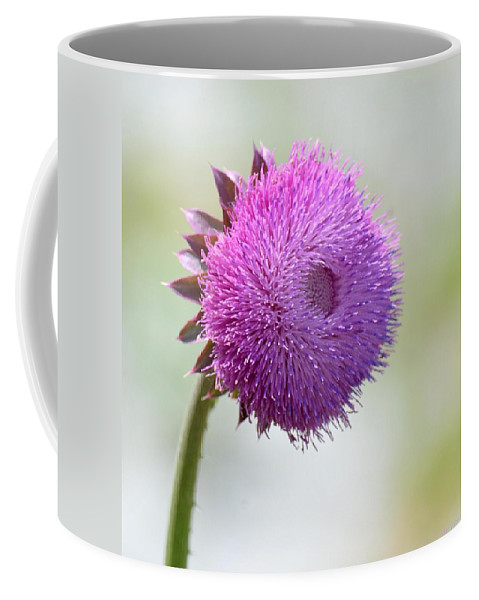 Lavender Perfection Coffee Mug featuring the photograph Lavender Perfection by Maria Urso