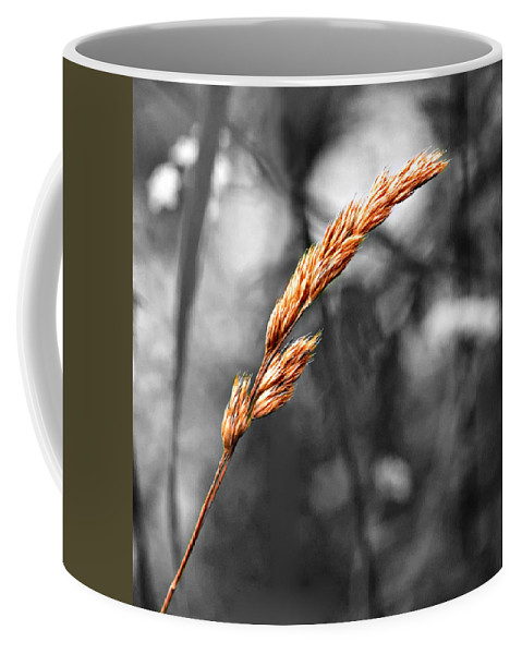 Grass Coffee Mug featuring the photograph Lazy Afternoon 2 by Steve Harrington