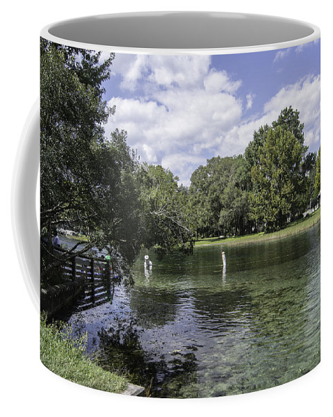River Coffee Mug featuring the photograph Lazy Day On The Rainbow River by Judy Hall-Folde